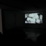 Vídeo - Henrique Vieira Ribeiro